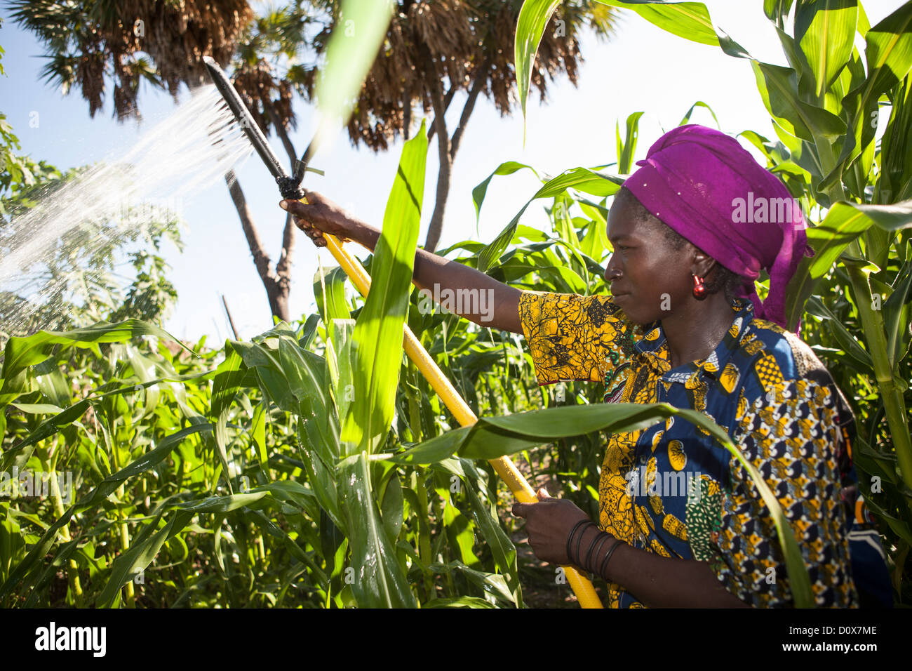 A woman waters her garden with the help of treadle pump irrigation system in Doba, Chad, Africa. - Stock Image