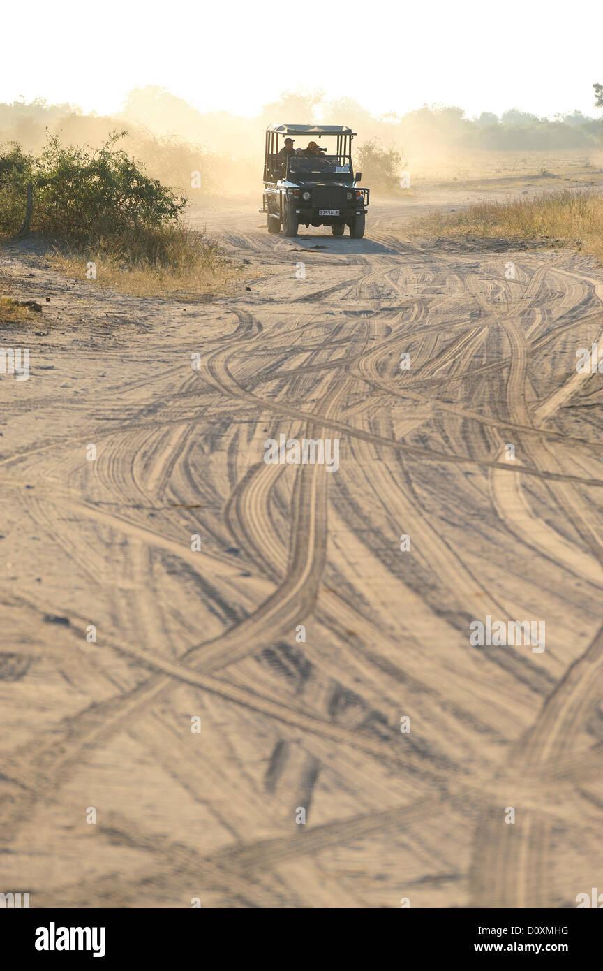 Africa, Botswana, Chobe, National Park, safari, horizontal, land rover, sand, track - Stock Image