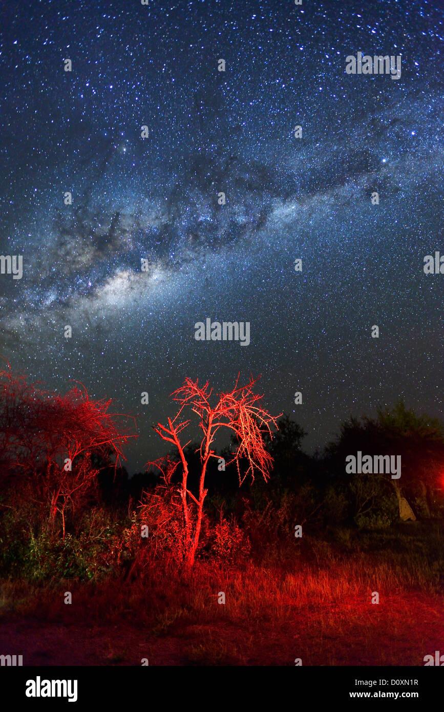Africa, Namibia, Fiume Lodge, Night Sky, stars, desert, sky, astro, photography, Bloomfontein, sky, stars, starlit, - Stock Image