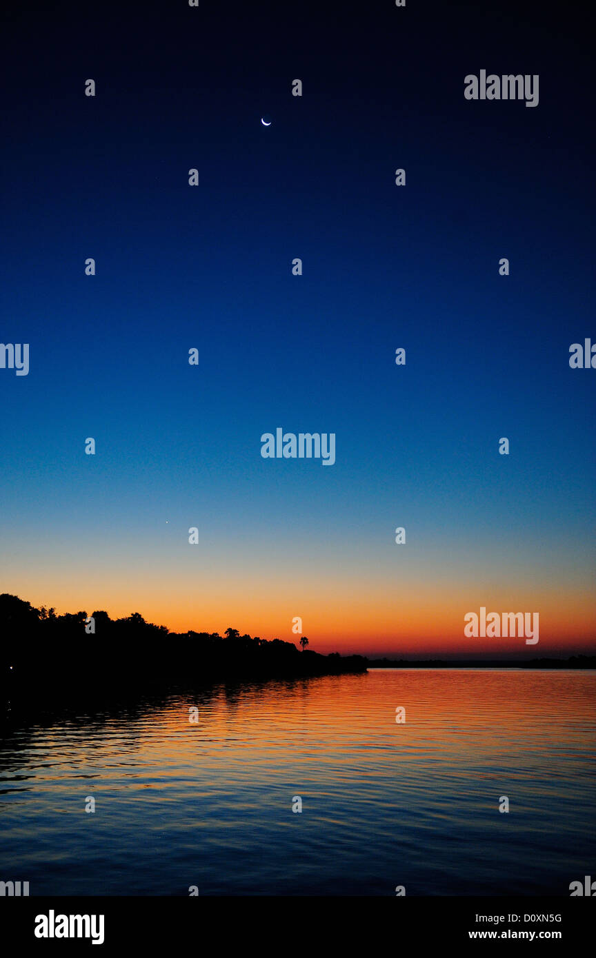 Africa, Zimbabwe, Zambezi, River, Southern Africa, dusk, palm, crescent, moon, night, vertical - Stock Image