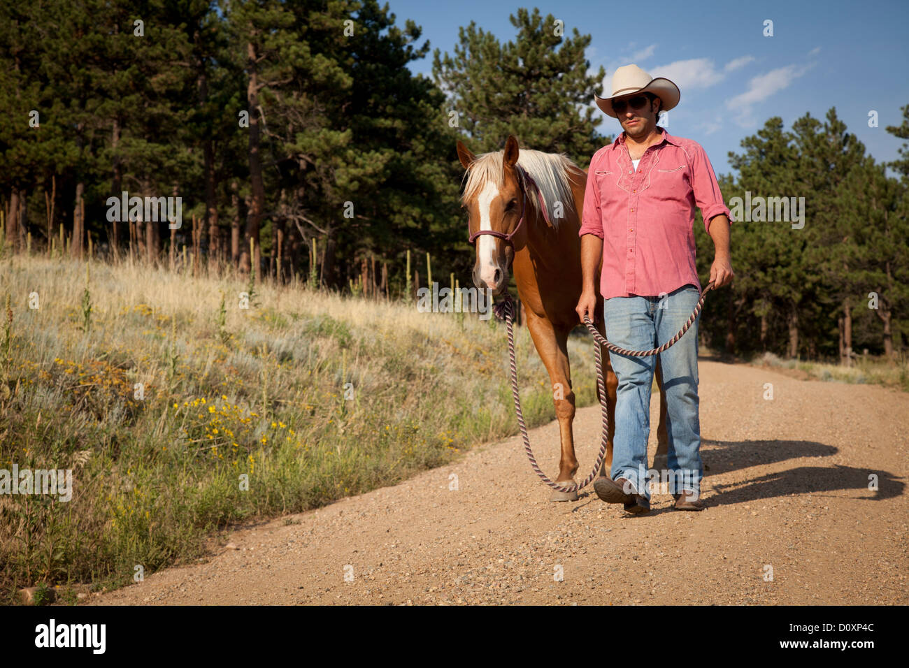Man and horse walking on dirt road - Stock Image