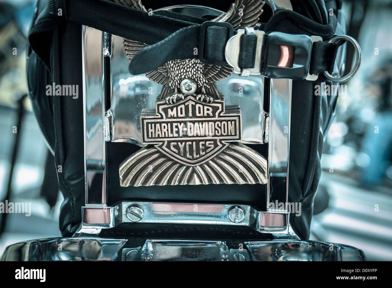 Helmut on seat of Harley Davidson motorbike - Stock Image