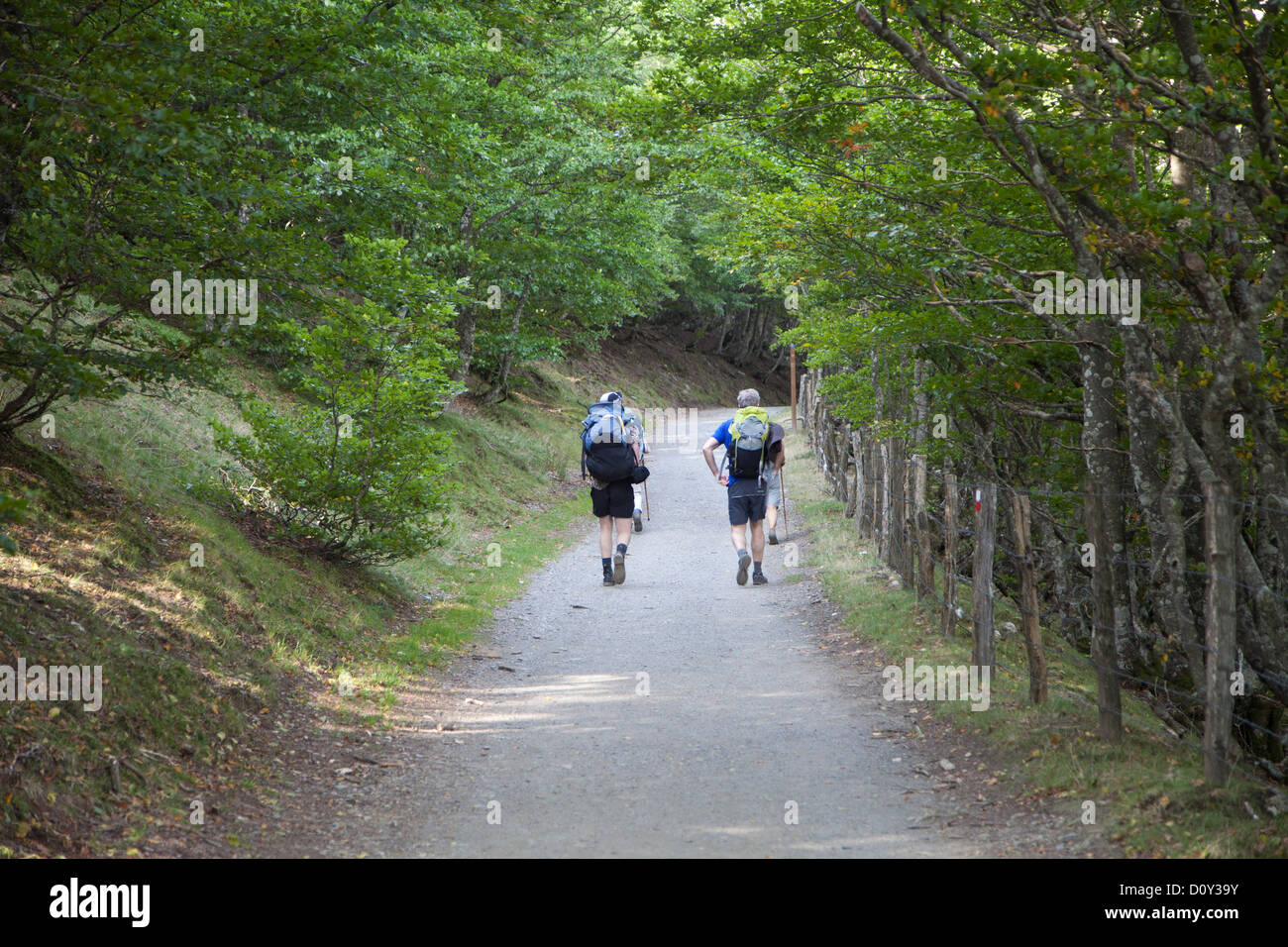 Pilgrims walking a pilgrimage route from St. Jean Pied de Port to Ronscavelles Spain, the French Route of the Camino - Stock Image