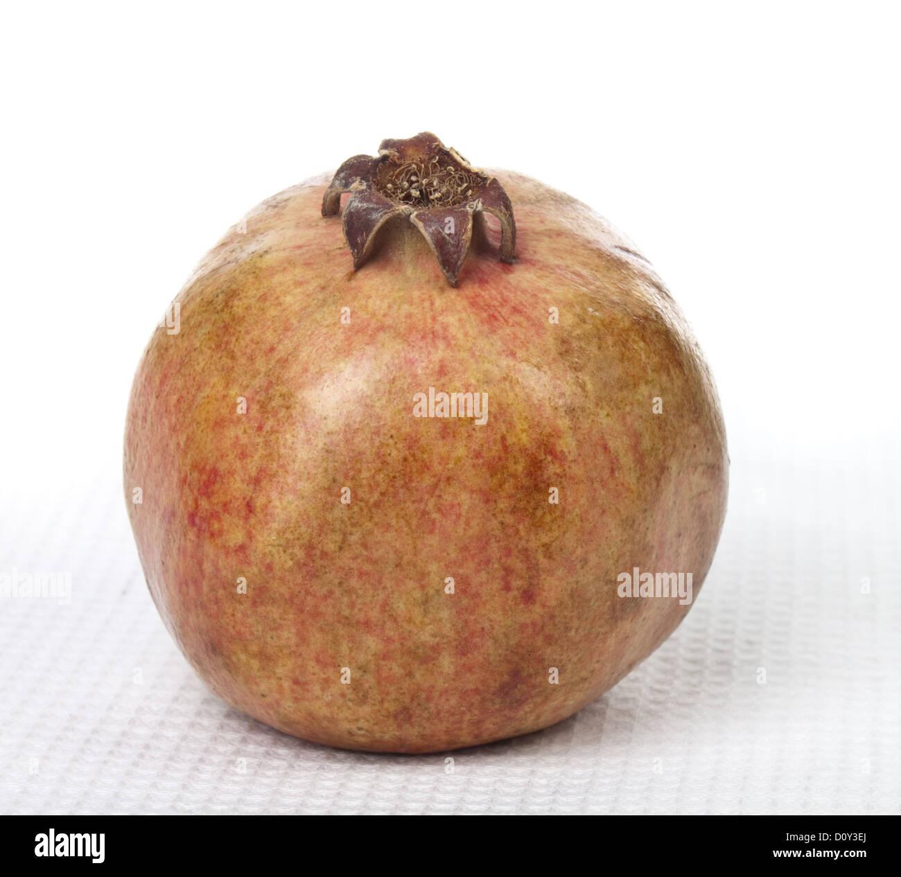 Natural grenades - Stock Image