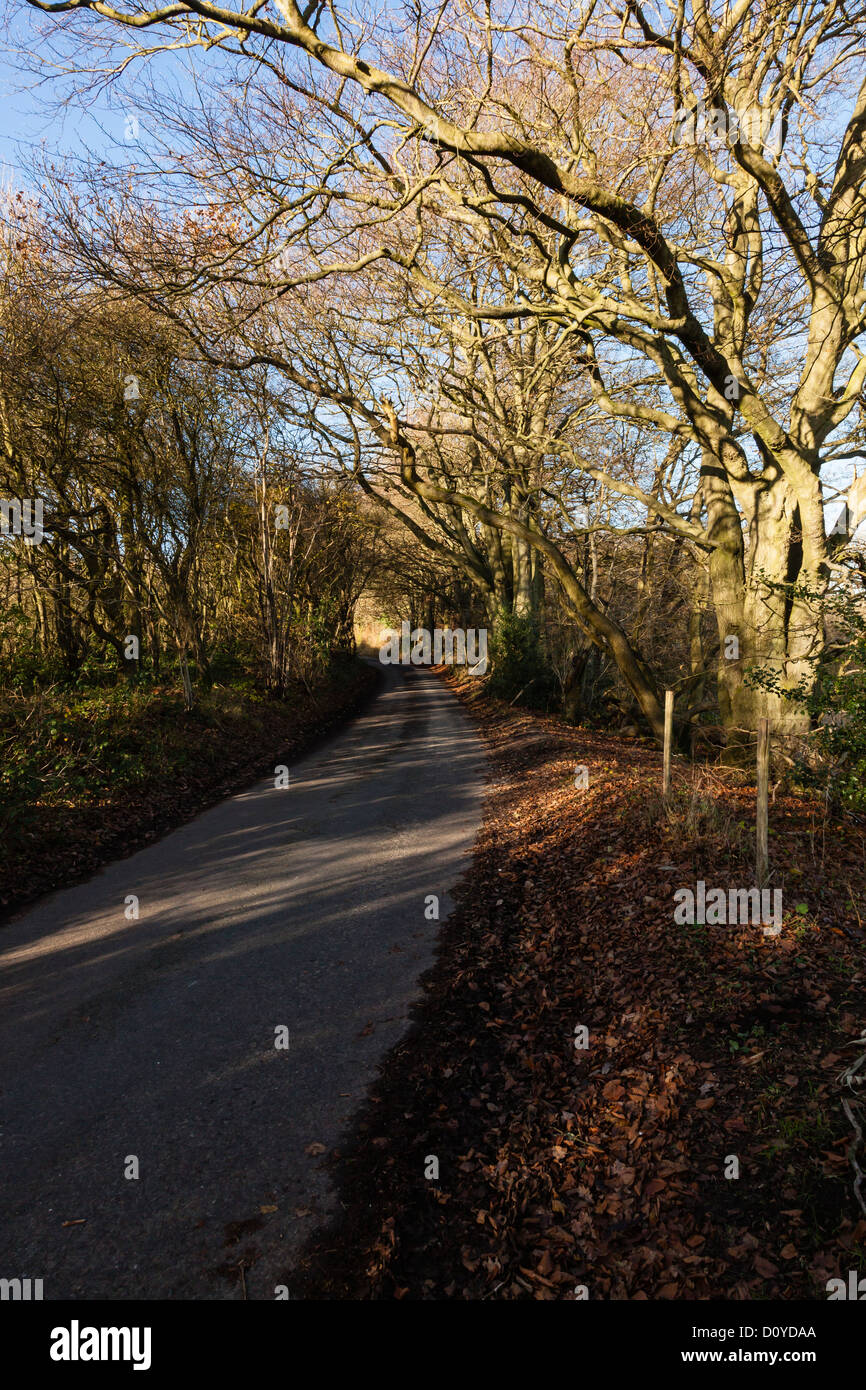 Views of the North Downs in Kent between Biggin Hill and Westerham, UK - Stock Image