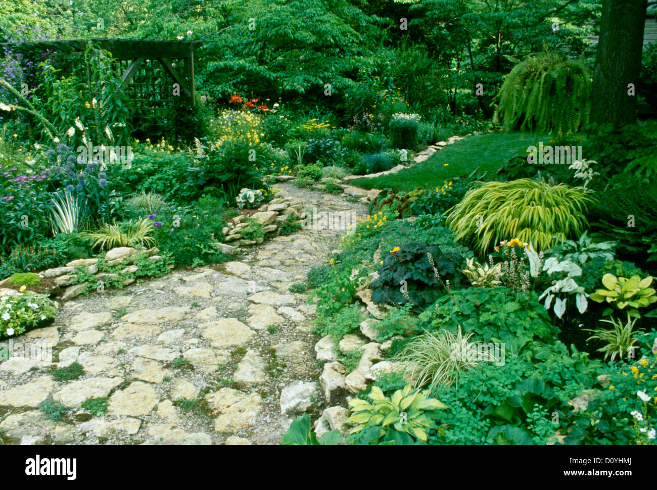 Beautiful Home Garden With Limestone Rock Path And Lush Summer Stock