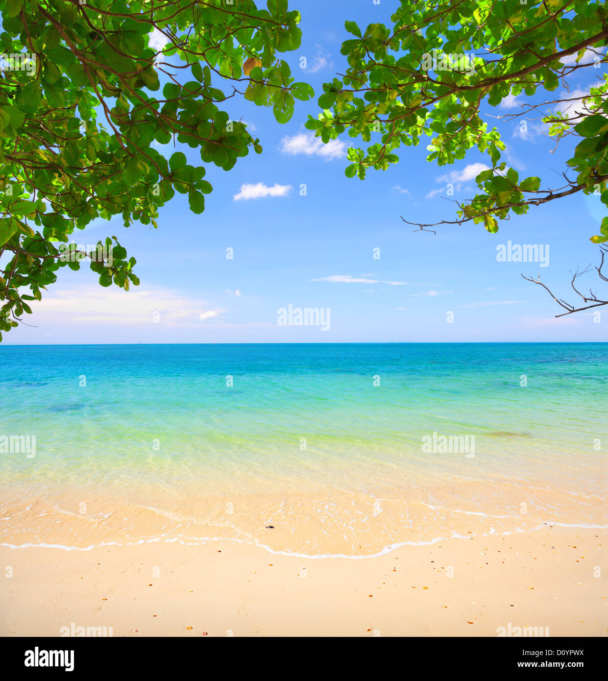 beautiful tropical beach - Stock Image