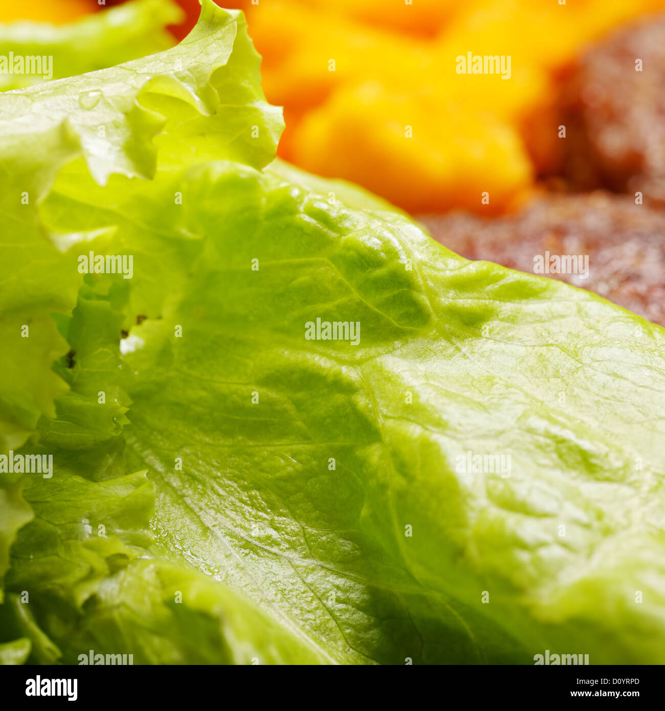 Green salad with breaded califlower and meat - Stock Image