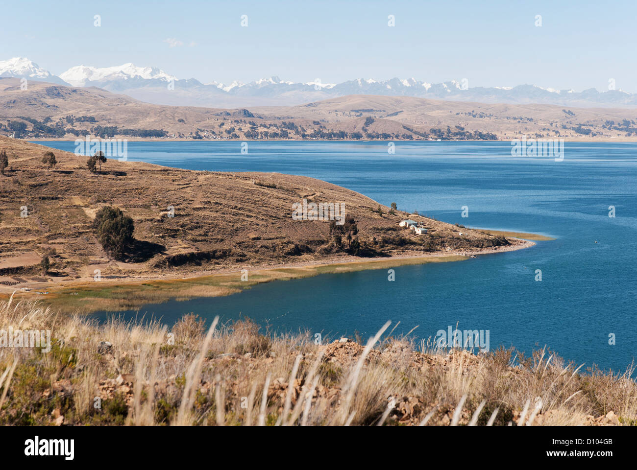 Lake Titicaca with Cordillera Real in the background - Stock Image