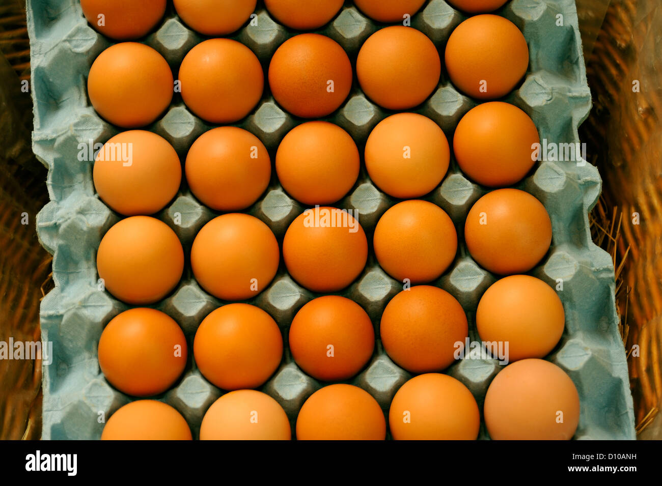 FRESH BROWN EGGS - Stock Image