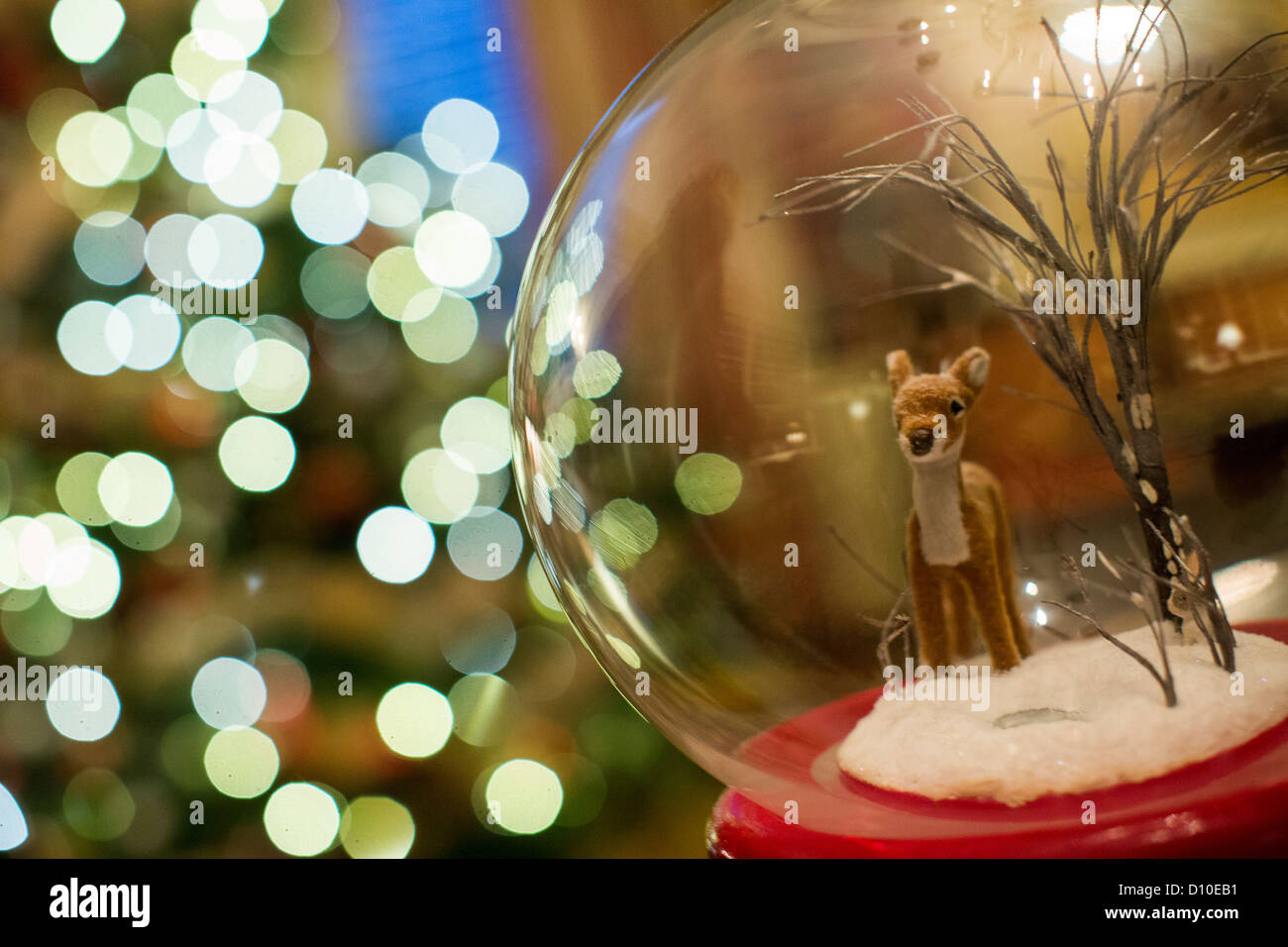 The 2012 White House Christmas decorations. The Library. - Stock Image