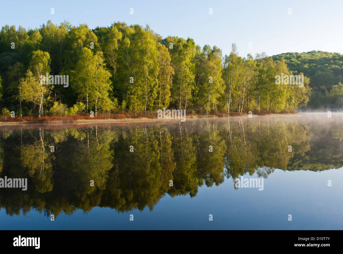 Calm lake and early morning mist. - Stock Image