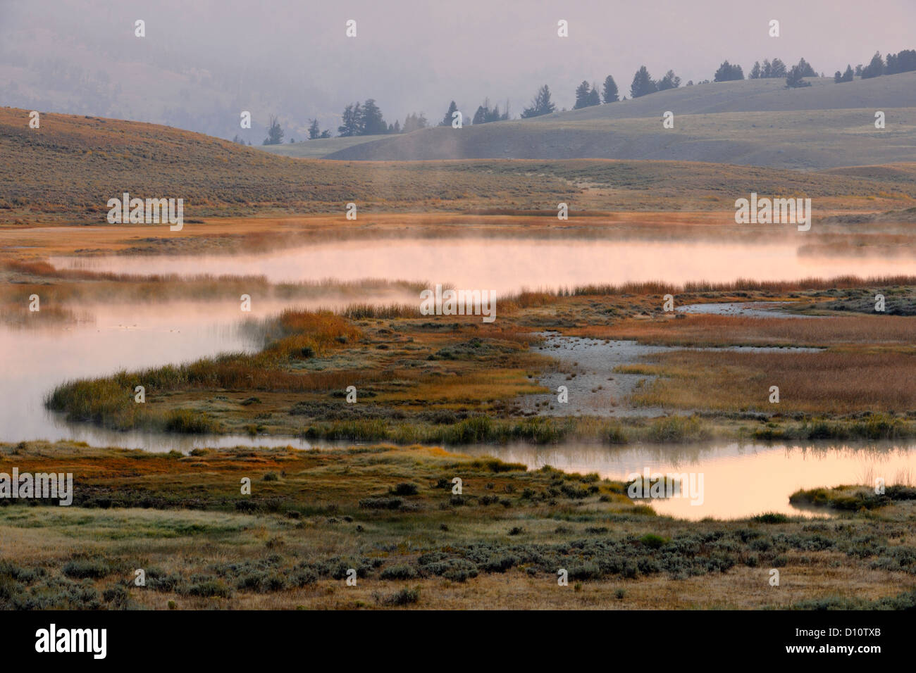 Blacktail Lakes with morning mists, Yellowstone NP, Wyoming, USA - Stock Image