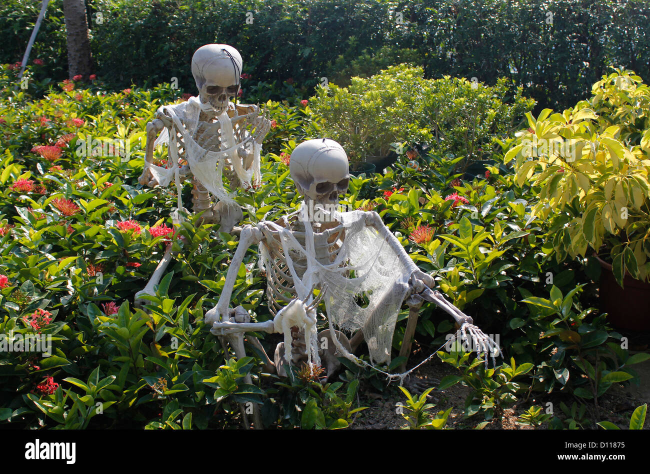 Bon Skeleton Decoration In Ocean Park Hong Kong China   Stock Image