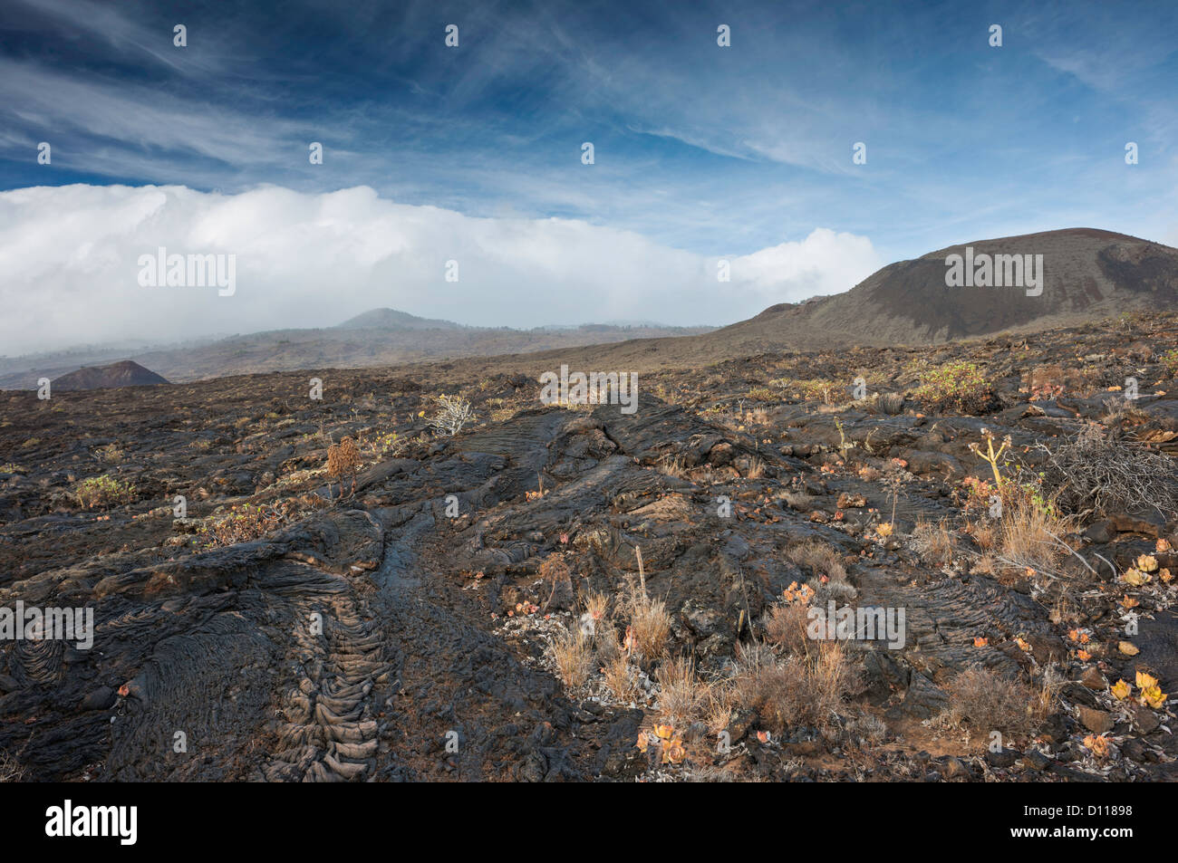 Pahoehoe (ropy) lava flows at Tacoron on the south coast of El Hierro, Canary Islands - Stock Image