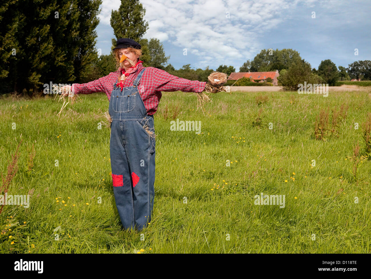 Farmer acting as a living scarecrow holding a bird's nest in his hand - Stock Image