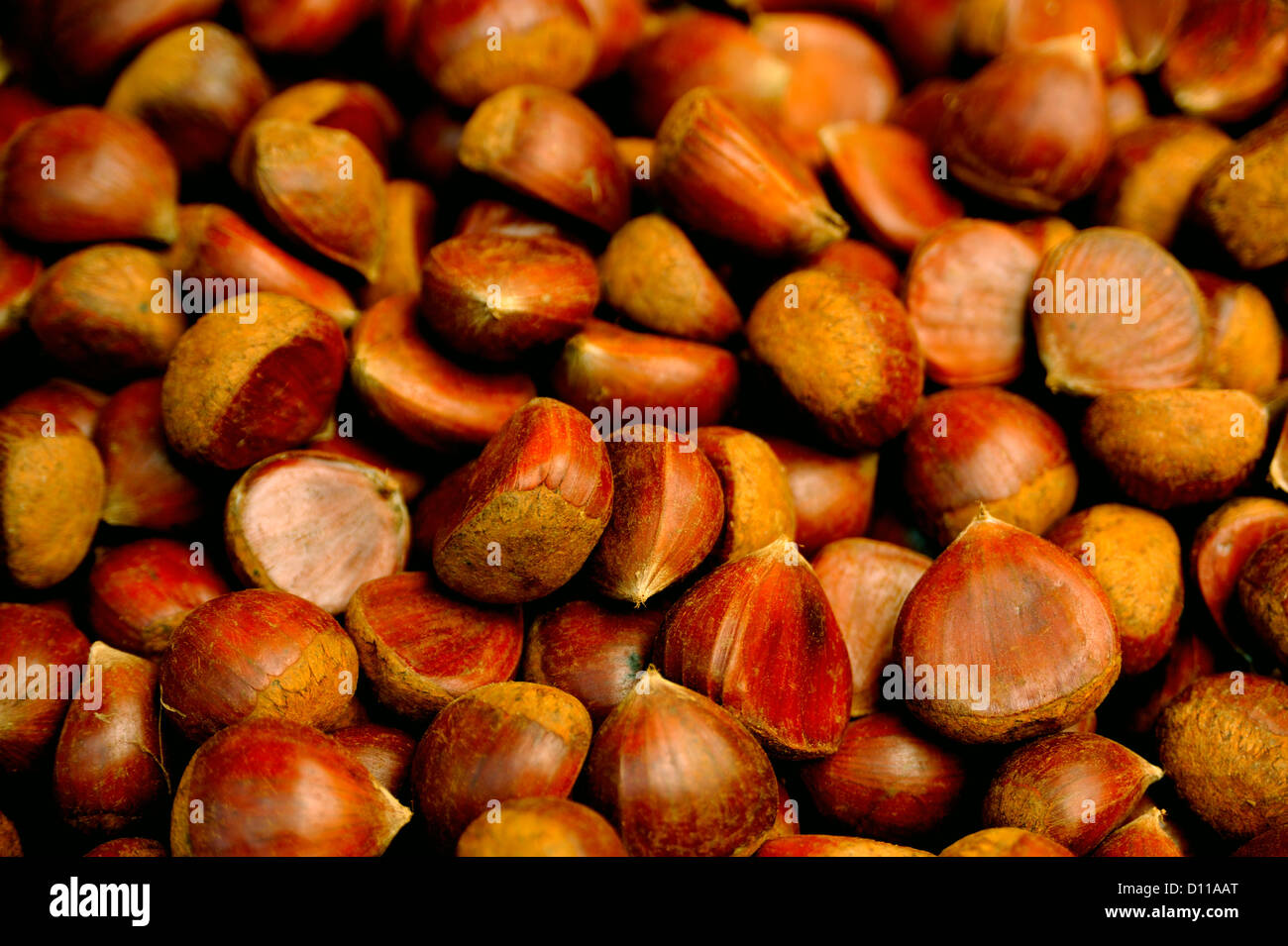 CHESTNUTS - Stock Image