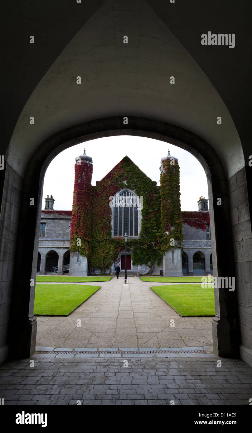 Creeper on Quadrangle or Aula Maxima Building, Galway University Founded in 1845, Galway City, Ireland - Stock Image