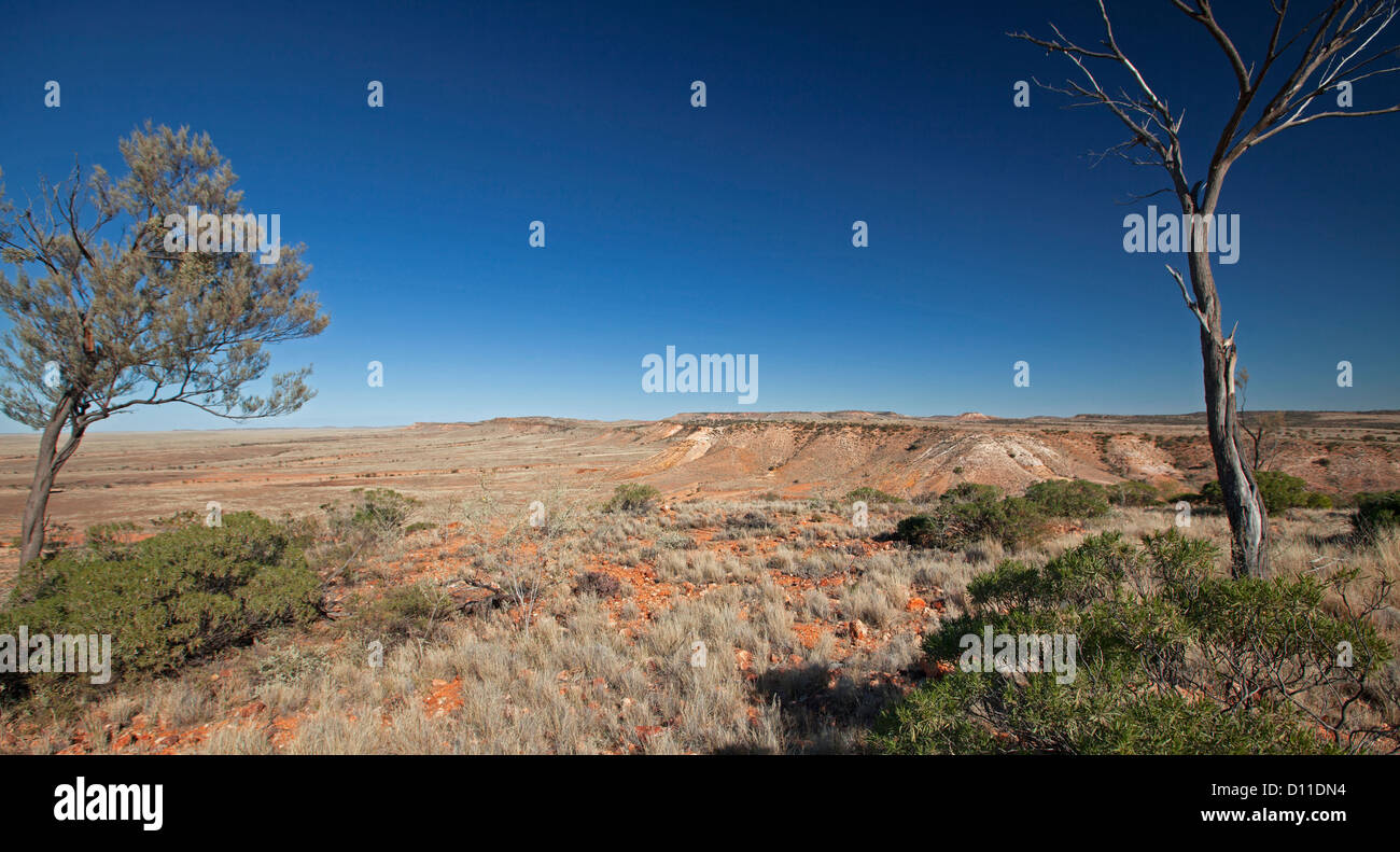 Australian outback landscape with jump ups / mesas rising from vast desert plains in Sturt National Park, NSW Australia - Stock Image