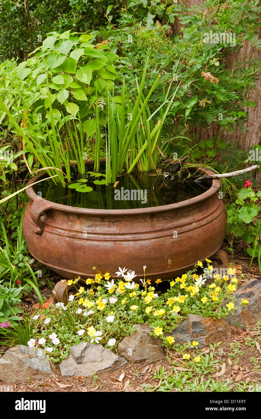 Ornate garden pond - large rusty cauldron as a water feature with colourful flowers and aquatic plants - Stock Image