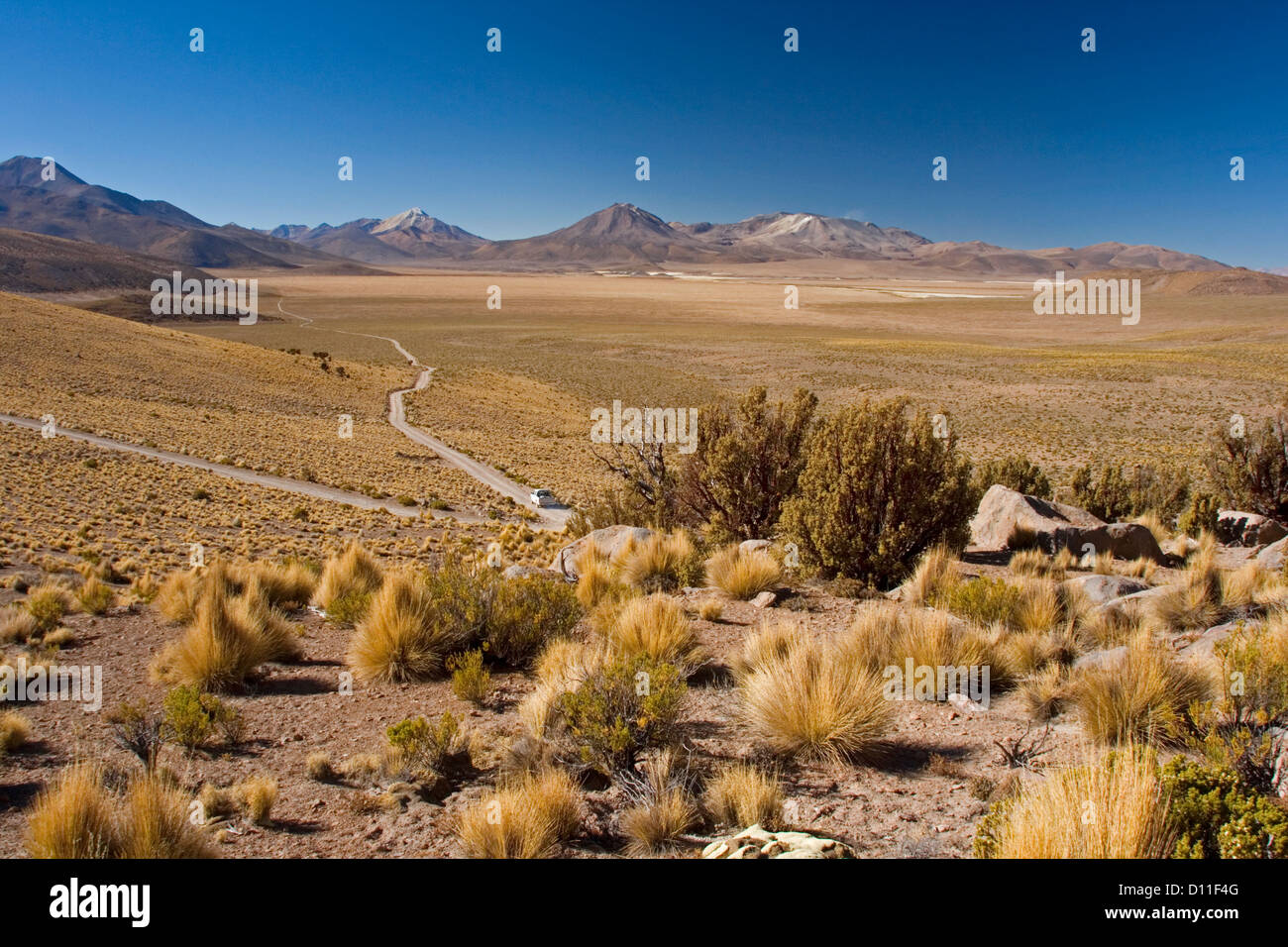 Vast desert landscape in Andes mountains at Volcan Isluga National Park with car on road far below leading to distant - Stock Image