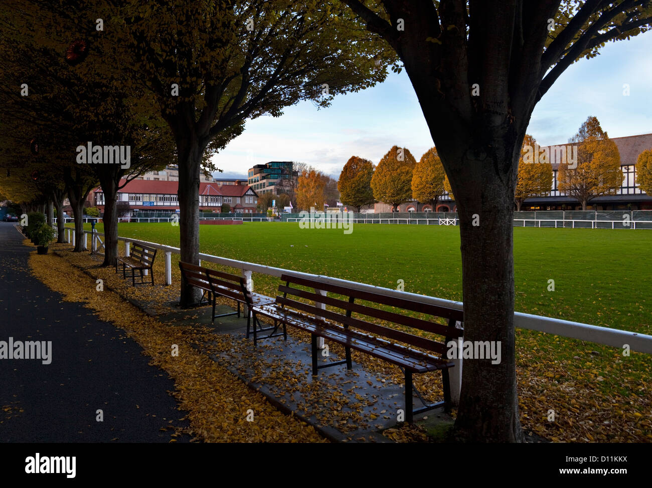 Autumn in the RDS - Royal Dublin Showground founded in 1731, Dublin City, Ireland - Stock Image
