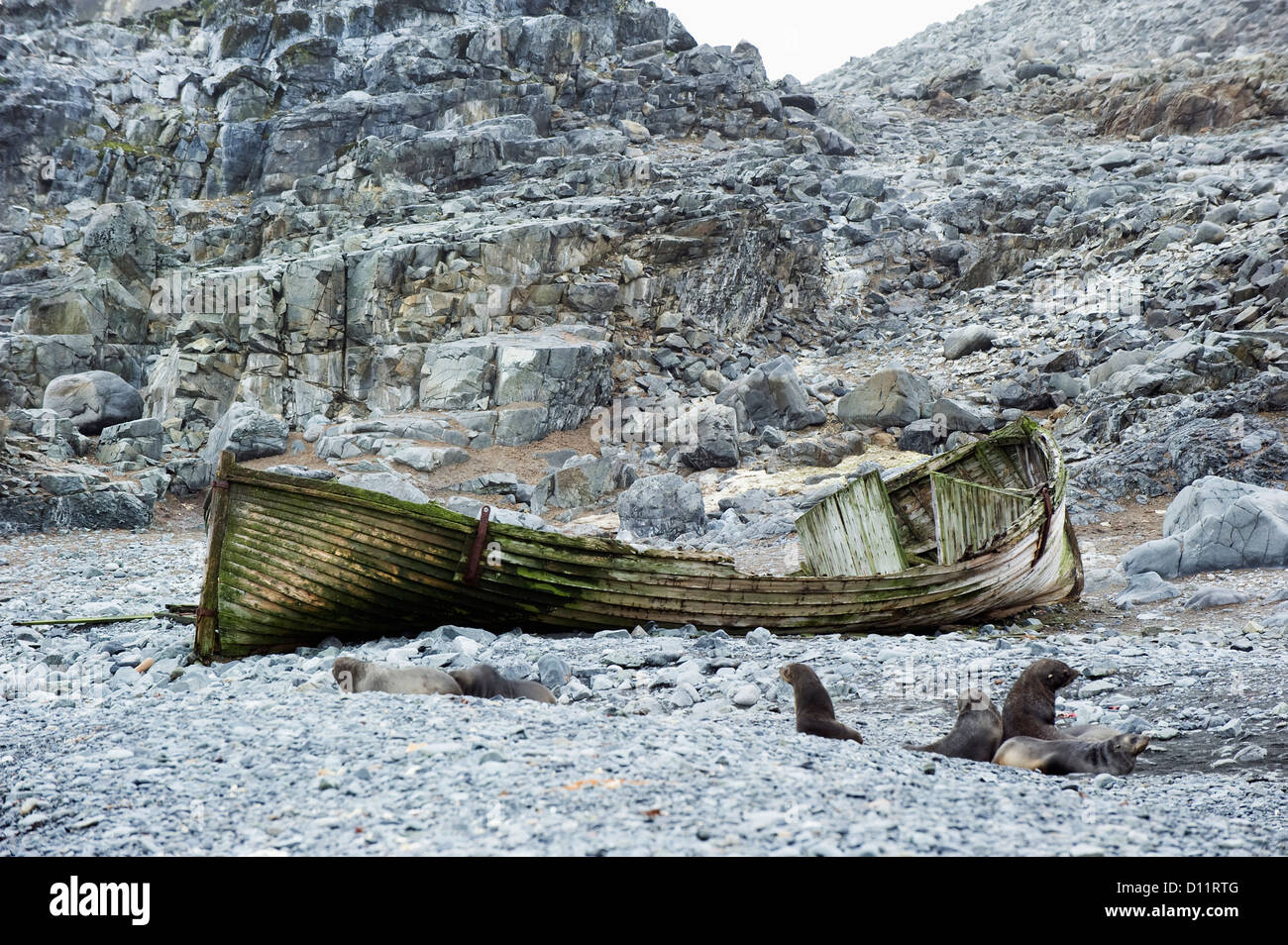 A Broken Abandoned Wooden Boat On The Shore; Antarctica - Stock Image