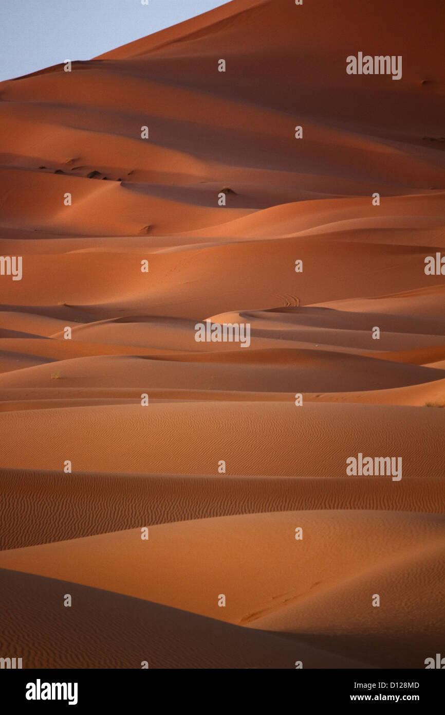 Morocco, Sahara, Erg Chebbi, Dune - Stock Image