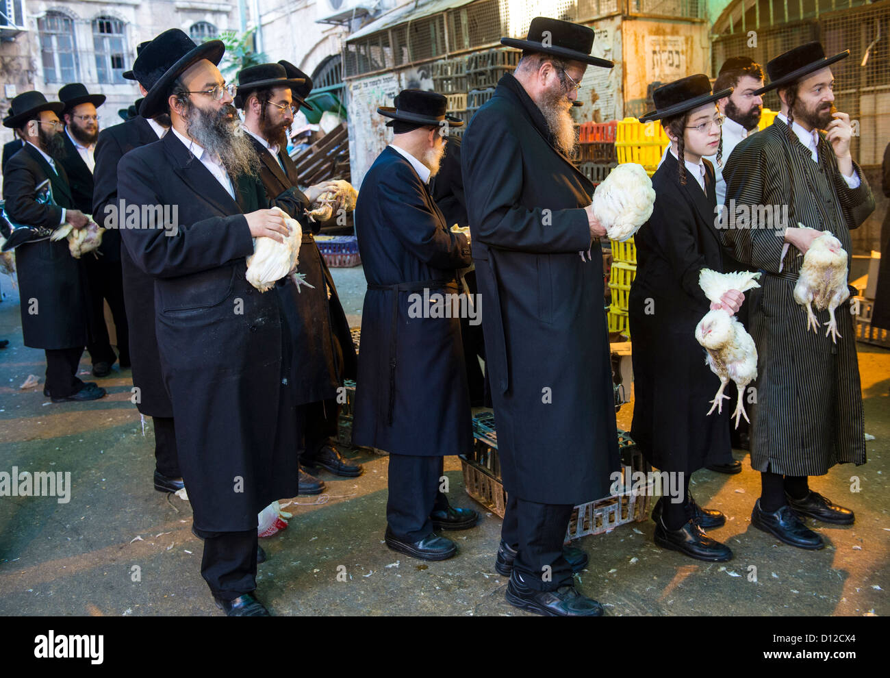 An ultra Orthodox Jewish men prays with a chicken during the Kaparot ceremony held in Jerusalem Israel - Stock Image