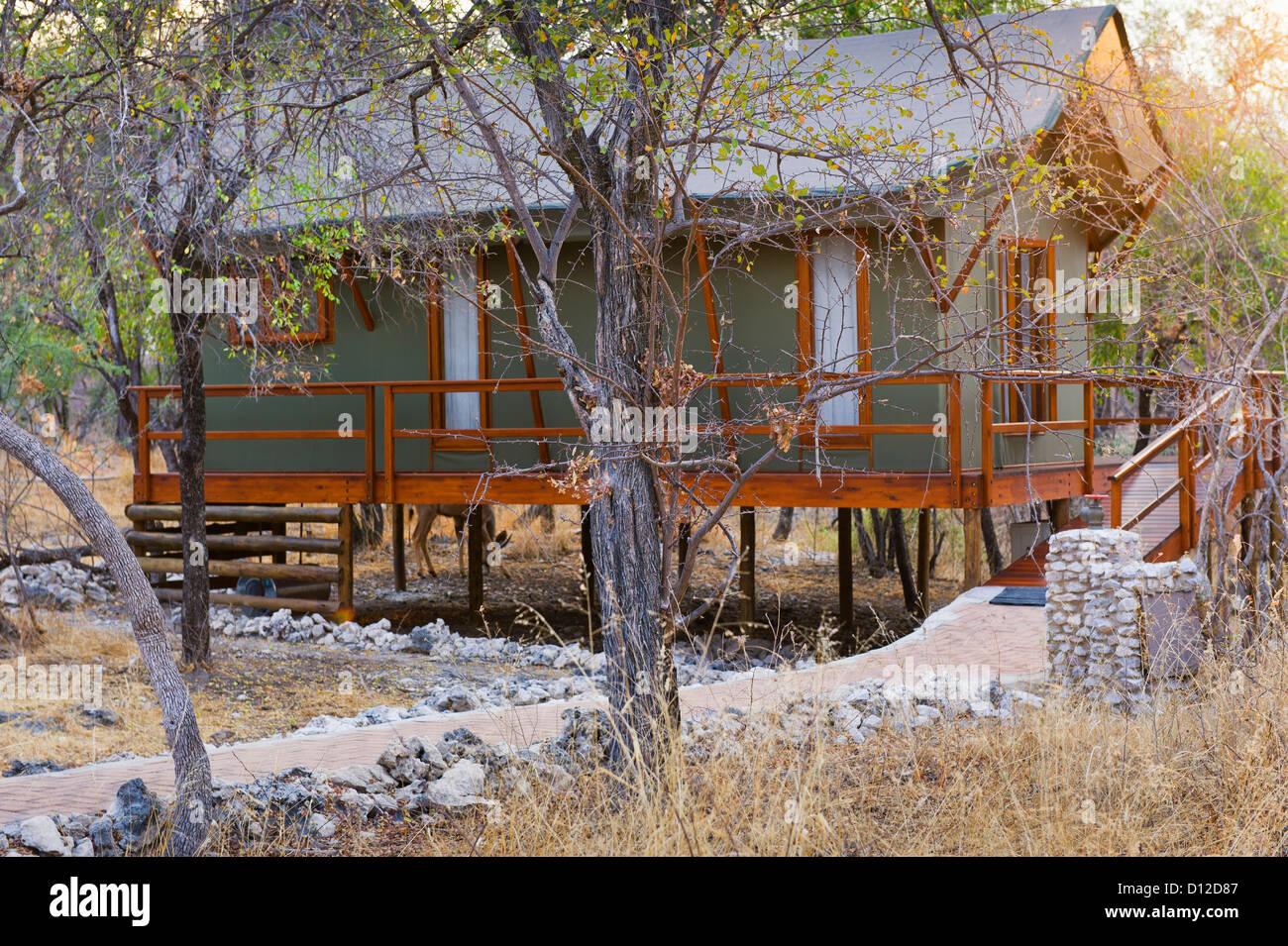 Luxury tented accommodation at Mushara Outpost, Mushara Lodge, Etosha, Oshikoto Region, Namibia, Africa - Stock Image