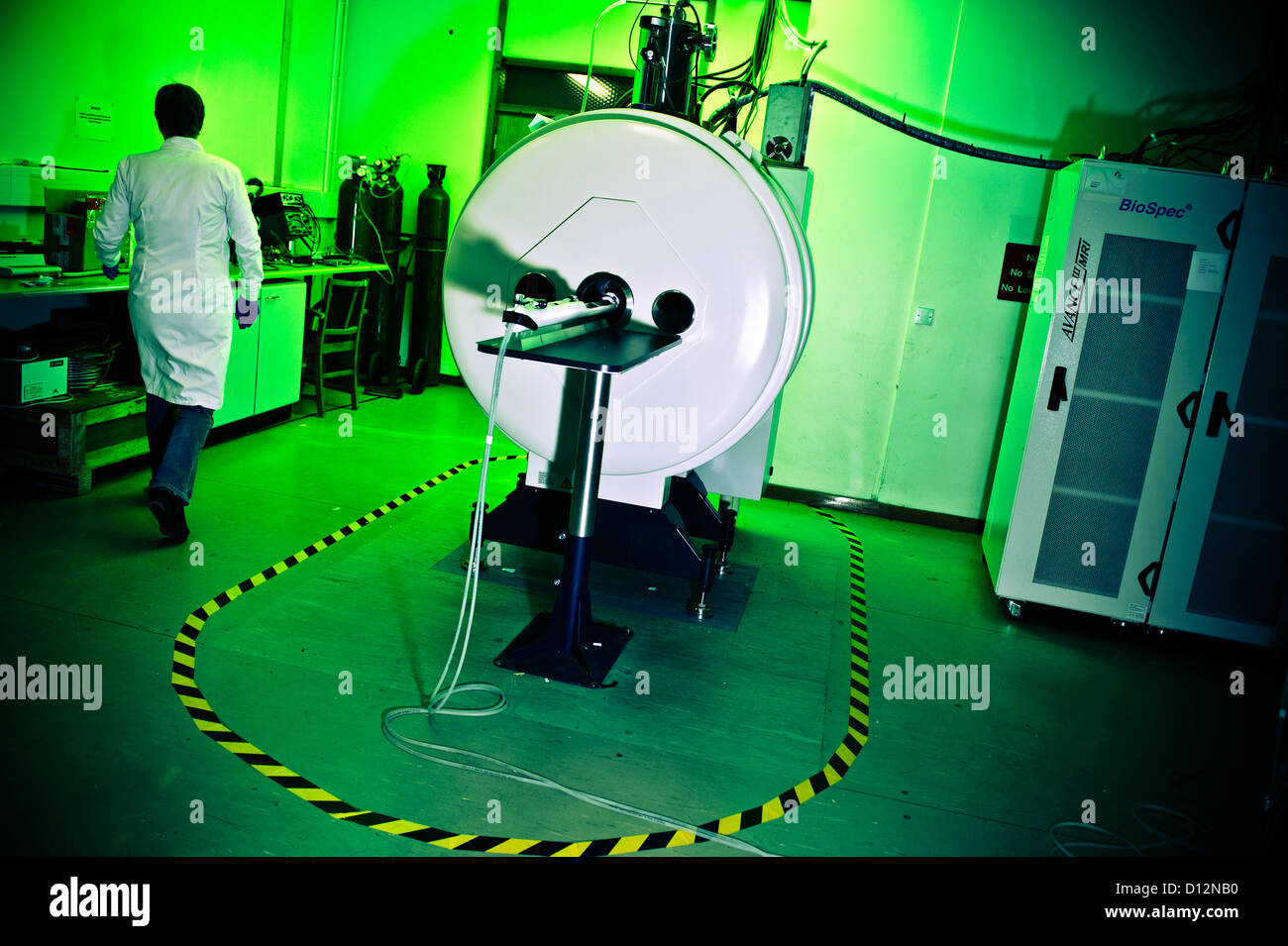 Technician or scientist in room with small bore Magnetic Resonance Imaging (MRI) scanner, in which small subjects - Stock Image