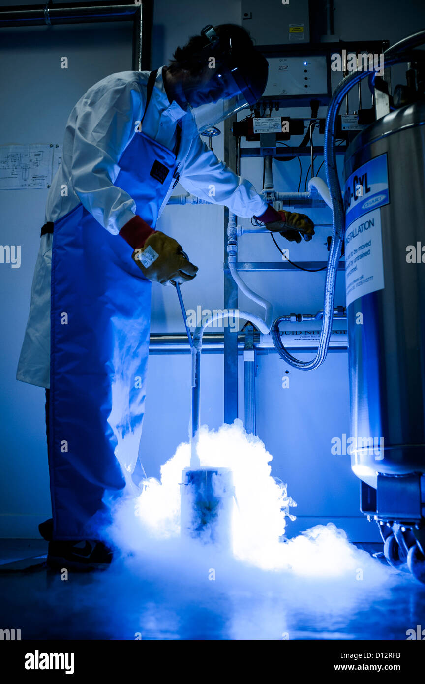 Scientist transfers liquid nitrogen from one container to another in science laboratory store room - Stock Image