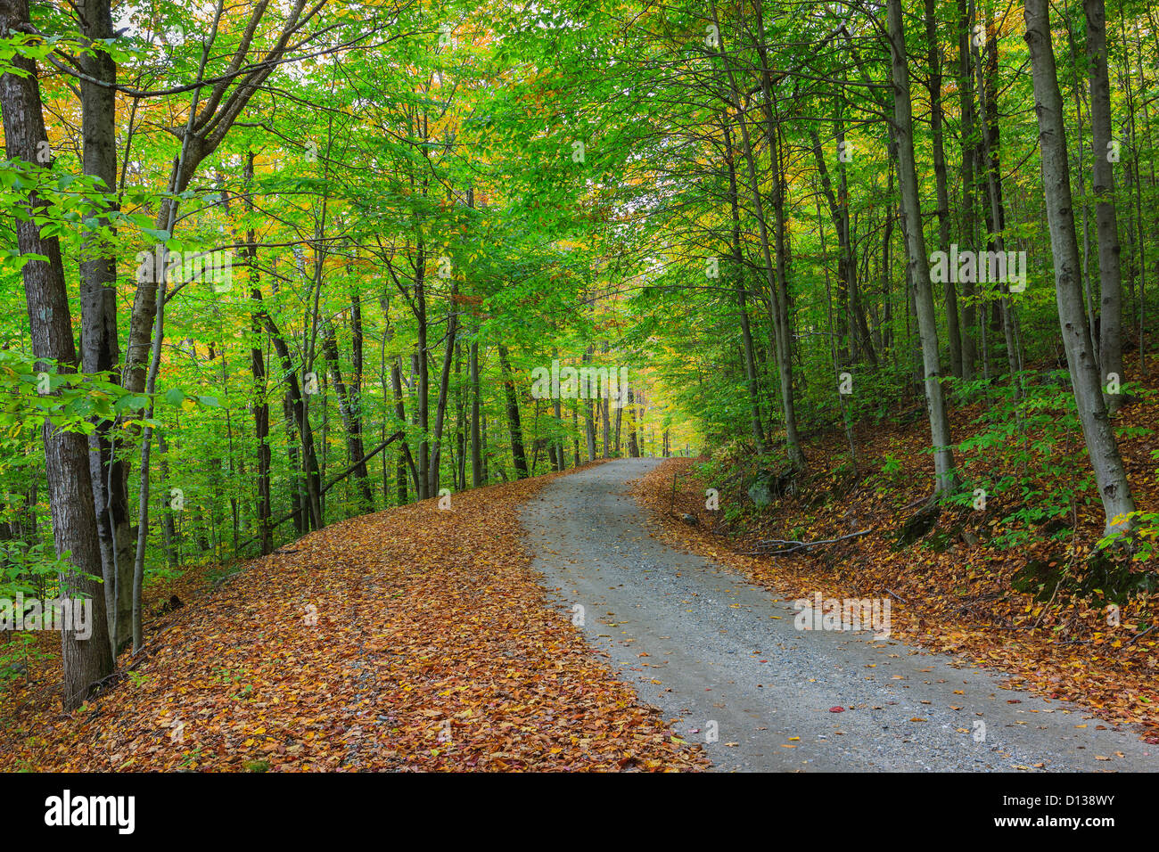 Back roads in Vermont during foliage season. - Stock Image