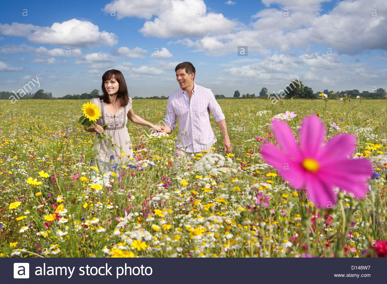 Smiling couple walking among wildflowers in sunny meadow - Stock Image