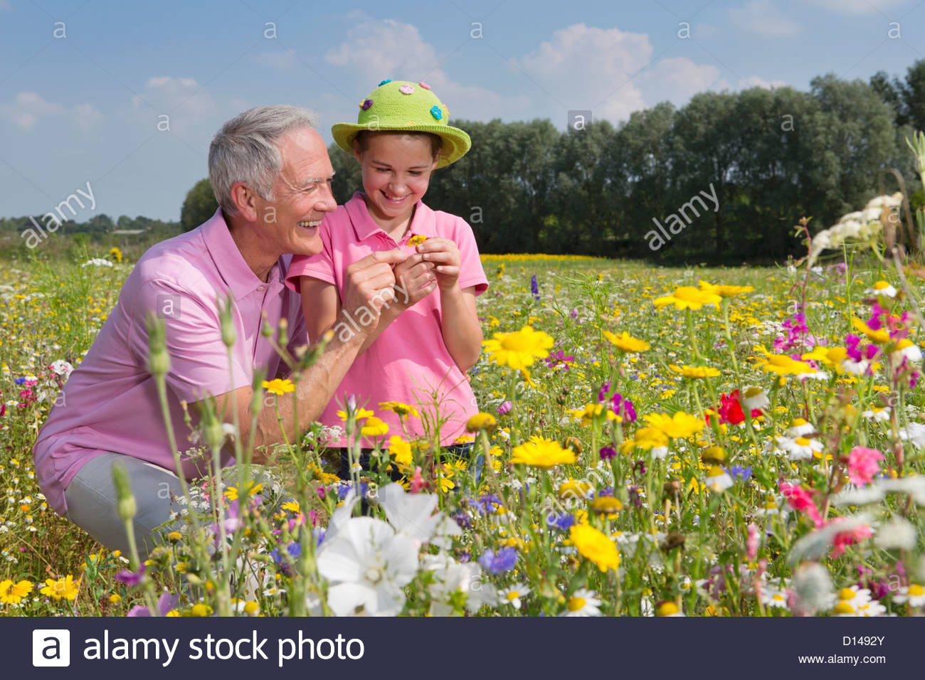 Smiling grandfather and granddaughter among wildflowers in meadow - Stock Image