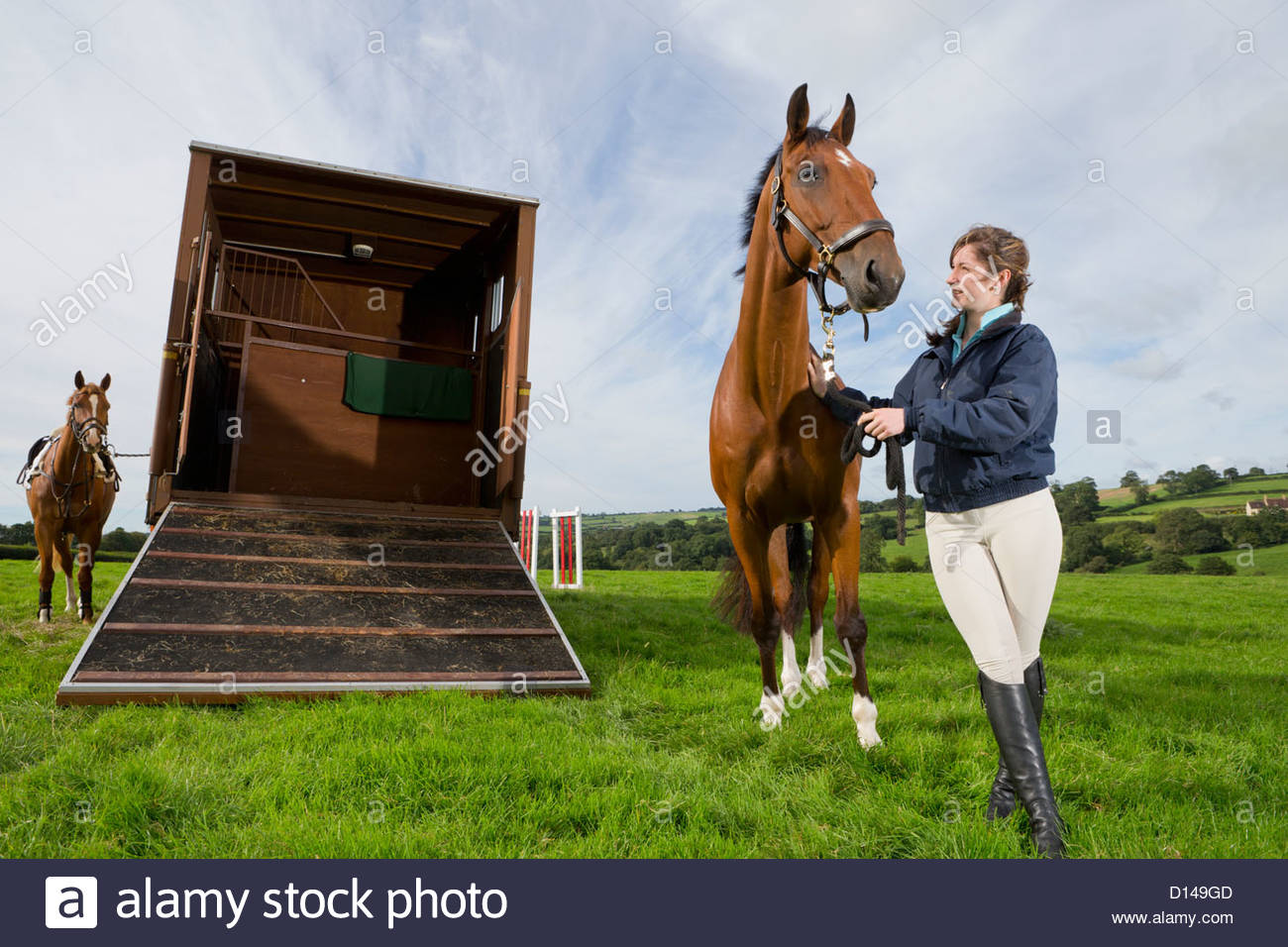 Girl with horse next to ramp of horse trailer - Stock Image