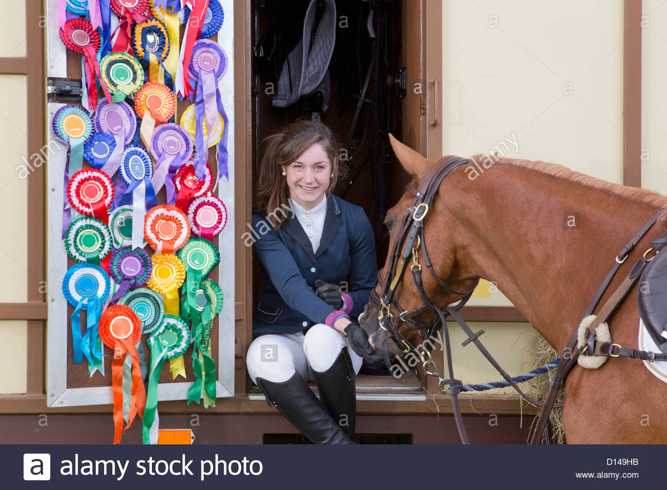 Portrait of smiling girl in equestrian uniform feeding horse in doorway of trailer with rosettes covering door - Stock Image