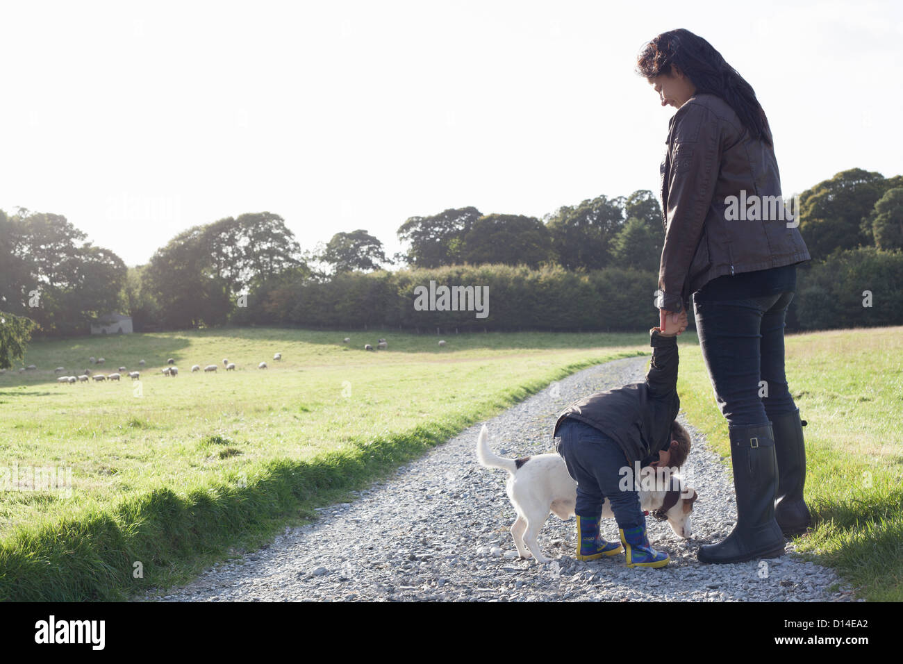 Mother and son walking dog on dirt road - Stock Image