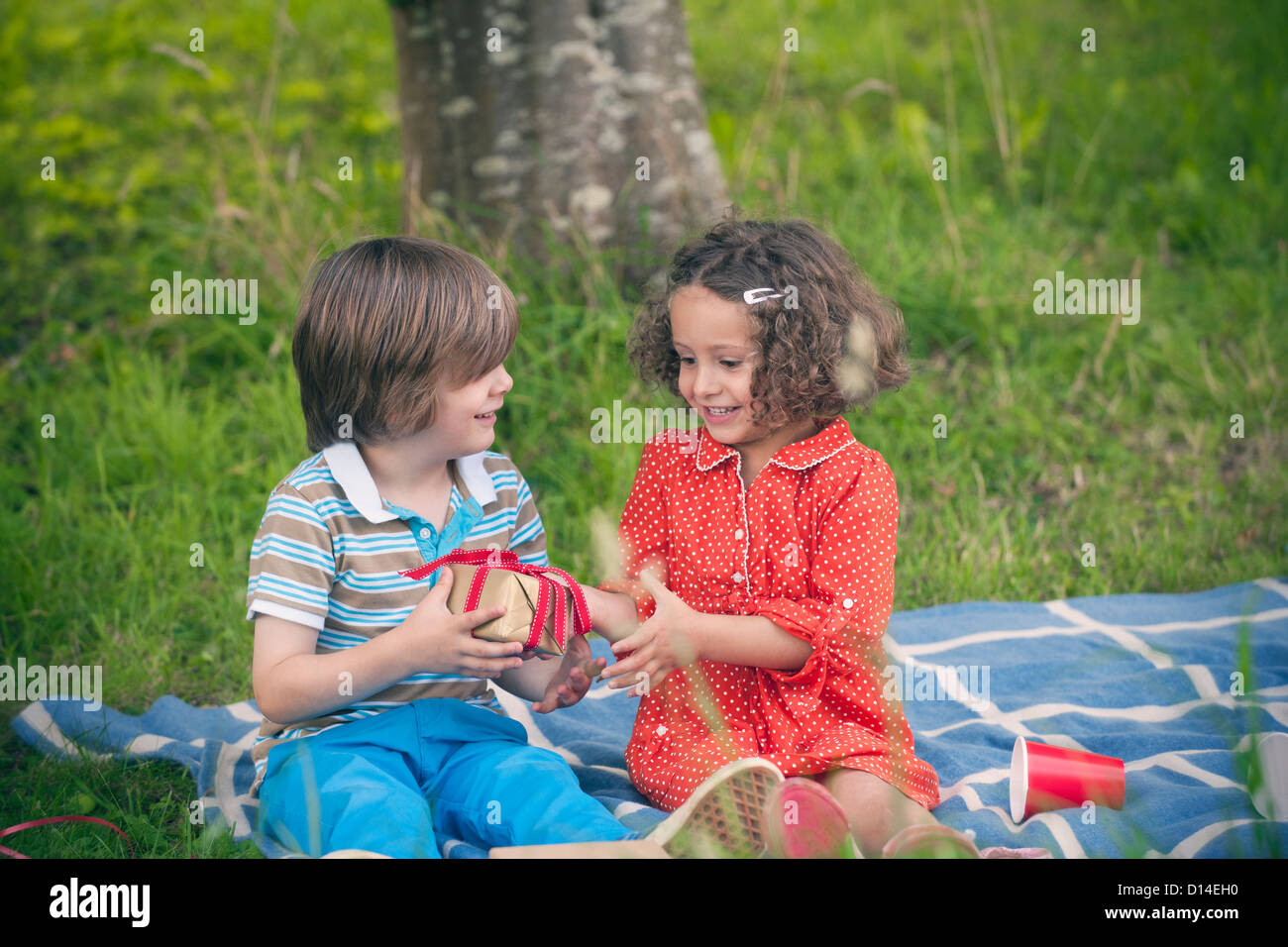 Girl giving gift at birthday picnic - Stock Image