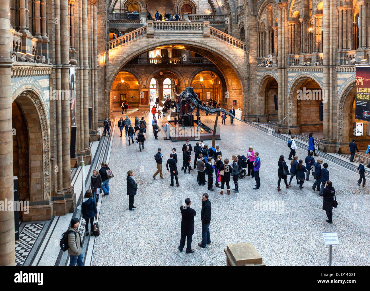 View of  the  main hall from the upper gallery at Natural History Museum, London - Stock Image