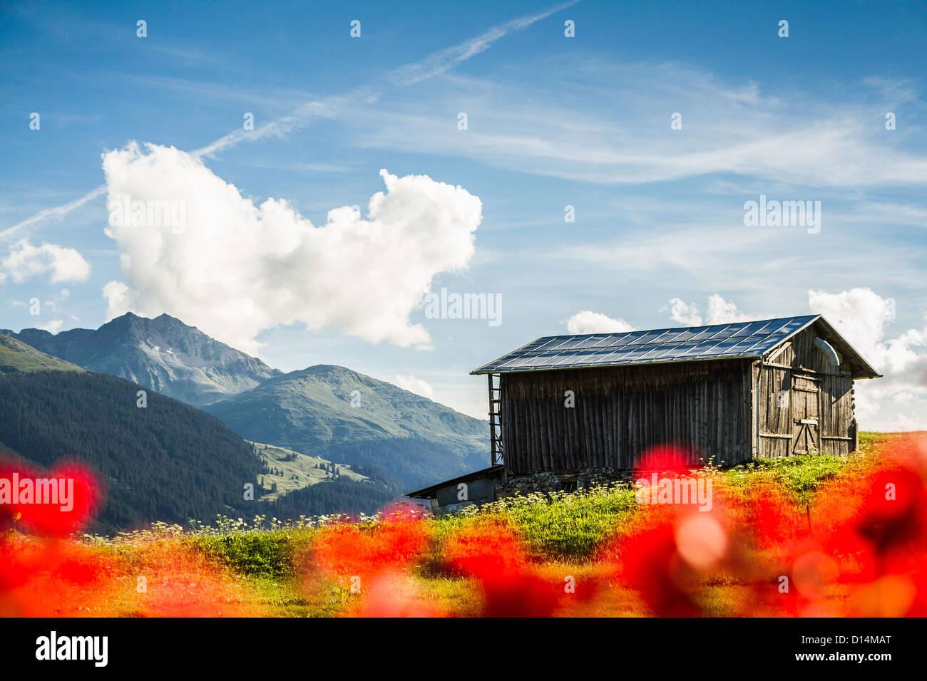 Log cabin in rural landscape - Stock Image