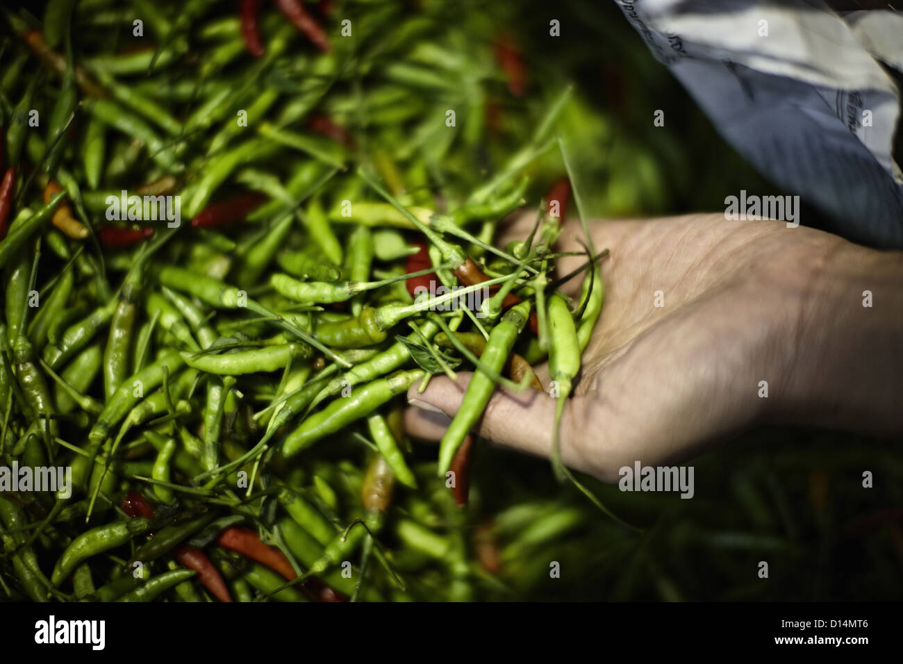Pile of fresh chilis for sale in market Stock Photo