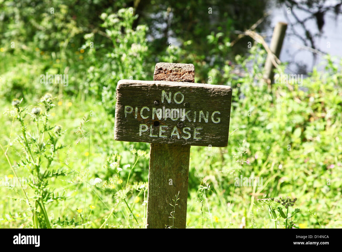 A wooden sign in the countryside saying no Picnicking please - Stock Image