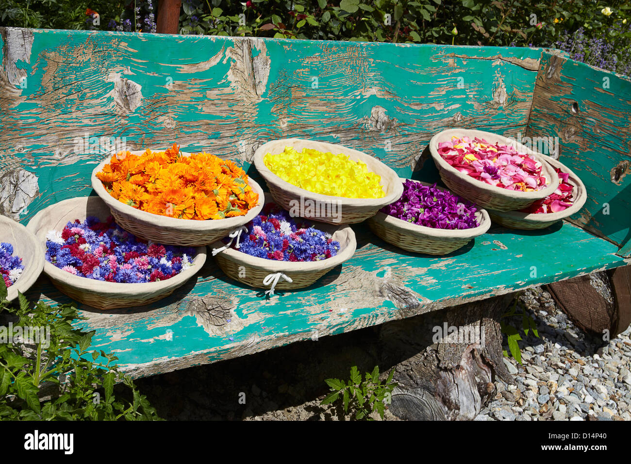 Baskets of flowers on wooden bench Stock Photo