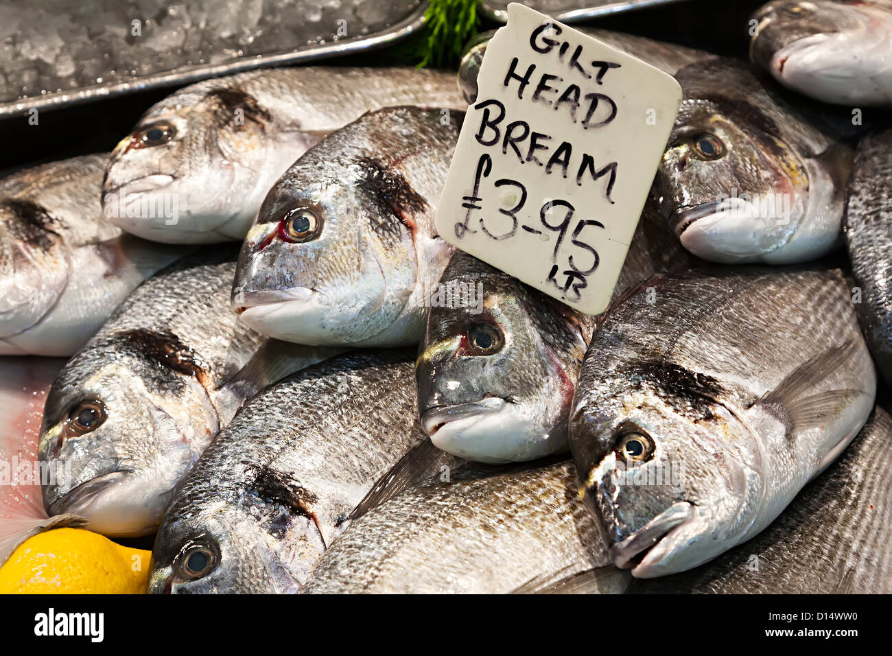 Gilt head bream fish on sale on fishmonger stall in market, St Hellier, Jersey, Channel islands, uk - Stock Image