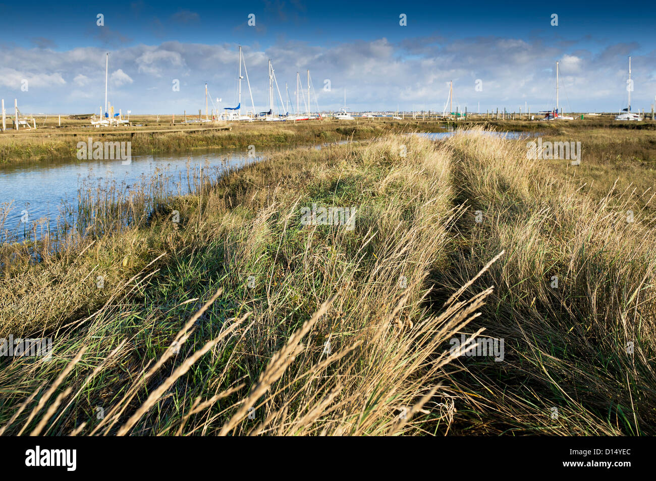 Boats moored on Tollesbury Saltings. Stock Photo