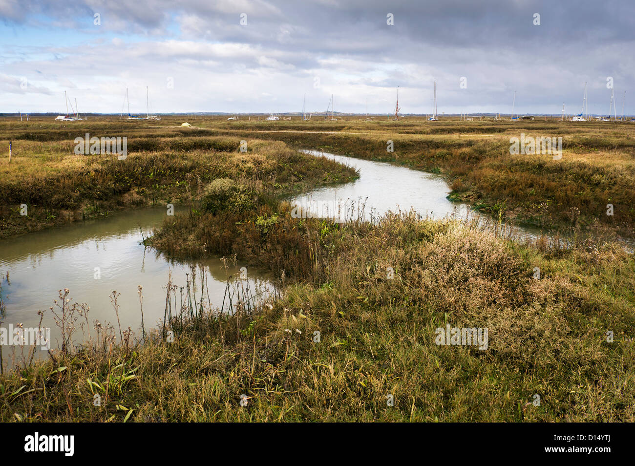 Tollesbury Saltings in Essex. Stock Photo