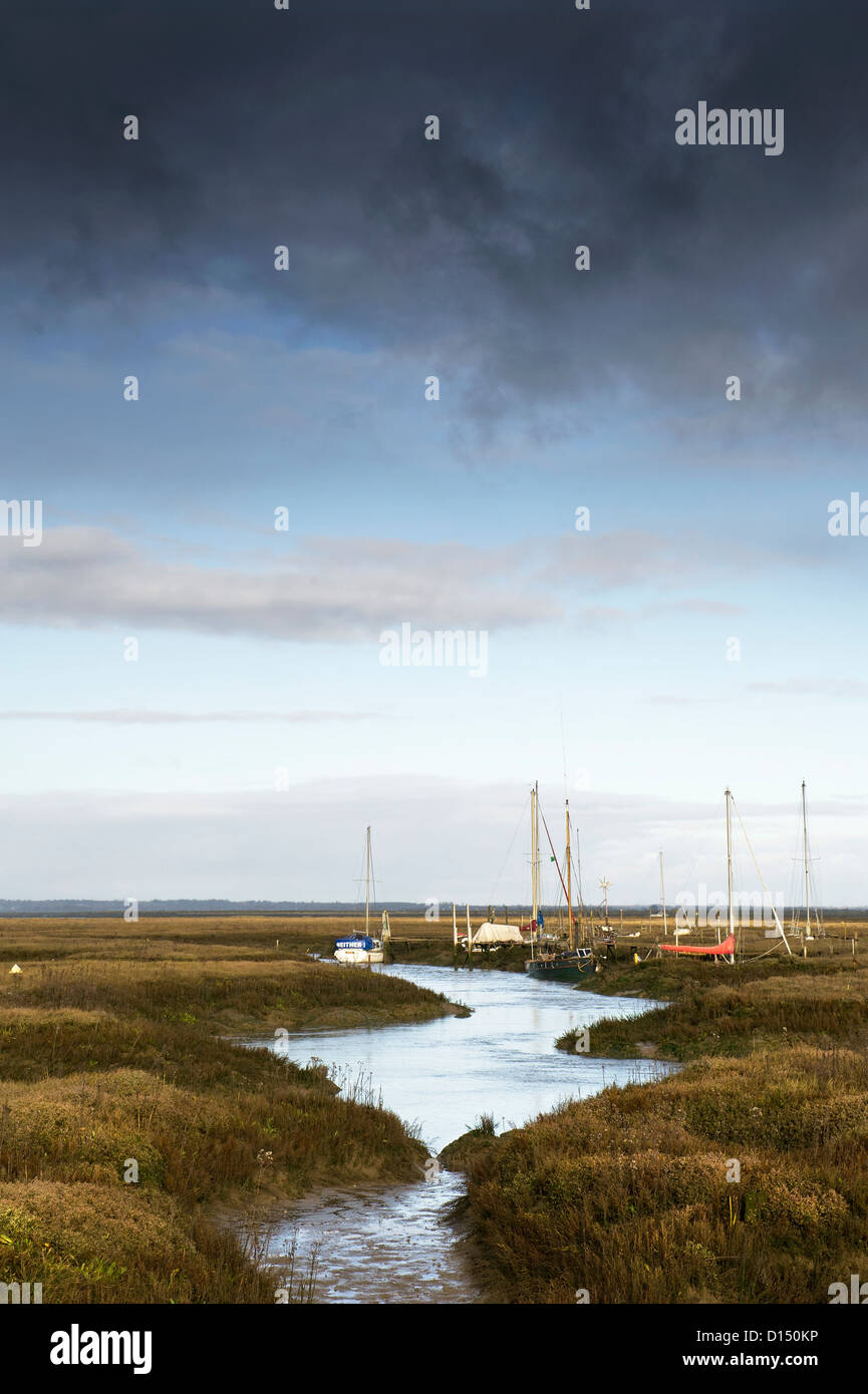 Tollesbury Saltings. Stock Photo