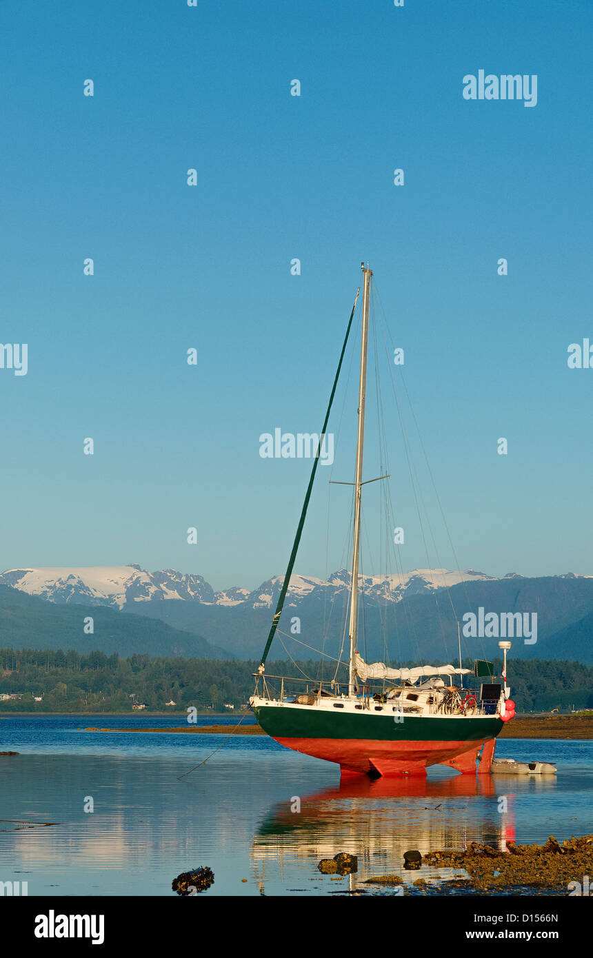 High and dry, sailboat anchored at low tide, Comox, Vancouver Island, British Columbia, Canada - Stock Image