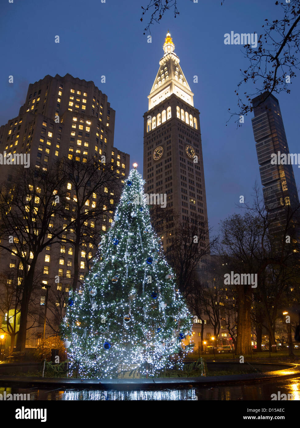 Christmas Tree and Lights, Madison Square Park, NYC Stock Photo ...